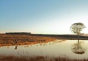 Dullstroom Nature Reserve