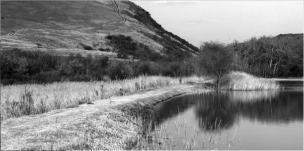 Nooitgedacht Dam Nature Reserve