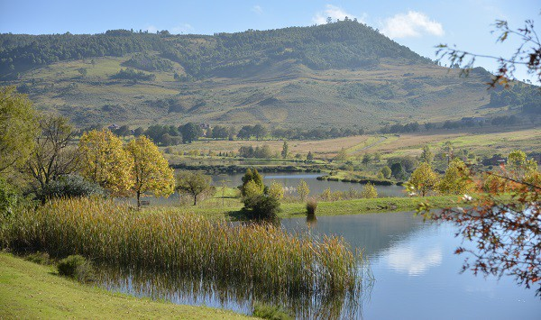 Romantic Getaways in Gauteng